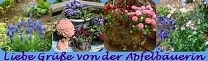Douglasie Oder Lärche : holzterasse aus douglasie oder l rche einheimisch oder sibierisch seite 1 terrasse ~ Eleganceandgraceweddings.com Haus und Dekorationen