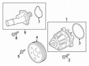 Ford Mustang Thermostat  Housing  Coolant  Engine