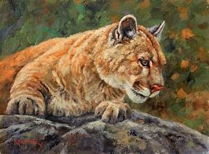 Cougar, Cougar Painting, Cougar Art, Mountain Lion ...