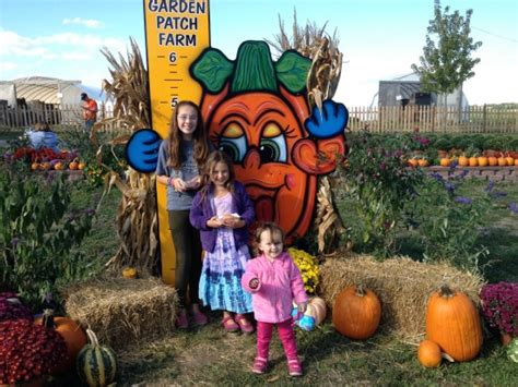 garden patch farms apple jelly and apple picking to re unite a family