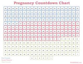 pregnancy week by week calendar printable calendar