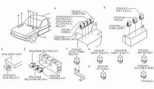 Nissan D21 Fuel Pump Wiring Diagram