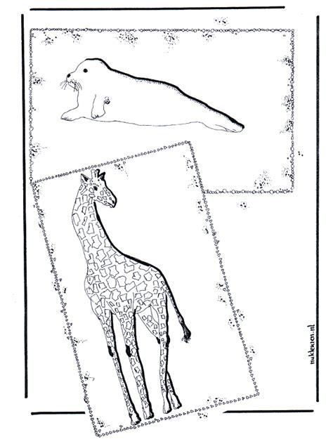 giraffe und seehund malvorlagen zoo