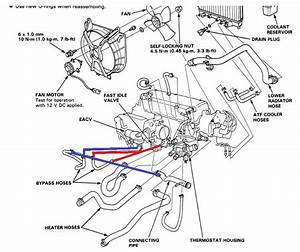 auto manual iacv hoses which one goes where pic request With honda blue coolant