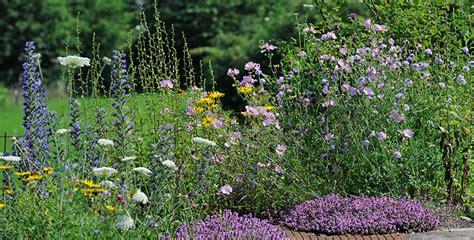 Naturgarten Planen Anlegen Und Gestalten by Wildpflanzenbeet Selber Planen Und Anlegen