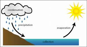 The Water Cycle: A thematic language activity packet for ...