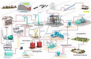 Palm Oil Mill Process Flow Diagram Introduction Palm Oil