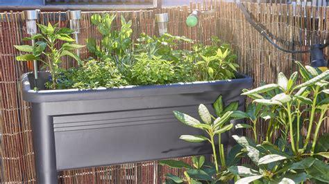 gärtnern mit dem hochbeet ob garten balkon oder terrasse hochbeete sind echte allrounder wetter de