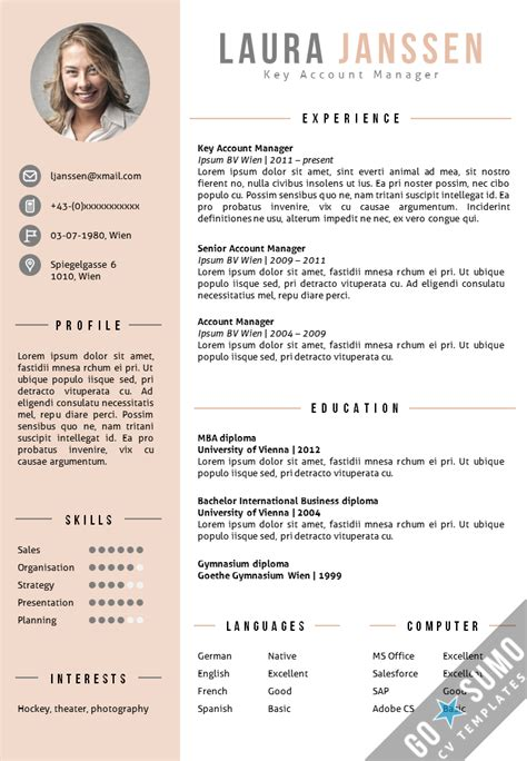 Cv Templates by Cv Template Vienna Cv Resume Layout Resume Design