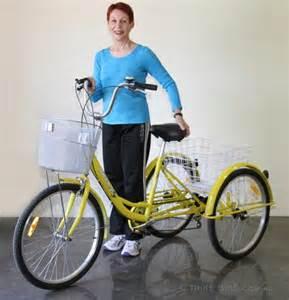 Adult Tricycle Trike Bike