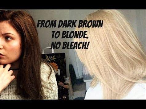 dark brown  blonde  bleach  damage