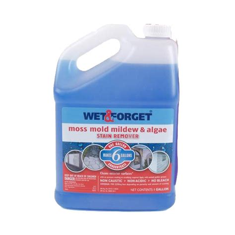 Wet And Forget 800006 1 Gallon Mildew Stain Remover Ebay