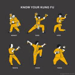 Know Your Kung Fu...