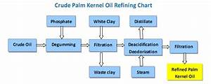 Palm Kernel Oil Refining Processing Machinery