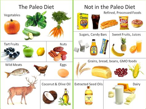 Whats The Paleo Diet Janes Healthy Kitchen