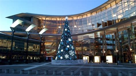 christmas in surrey lights events trees bc 2016 2017