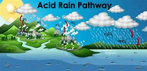 Funny Acid Rain Diagram