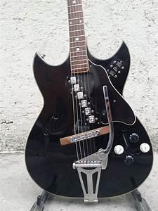 The Unique Guitar Blog  Guitars With Unique Pickups