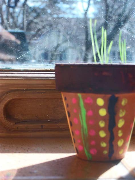 painted terra cotta pot  painted flower pot