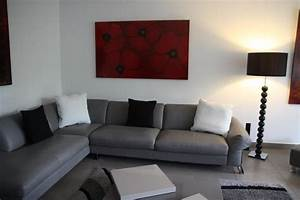 salon gris blanc noir rouge