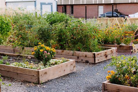 Container Gardening : Wasatch Community Gardens