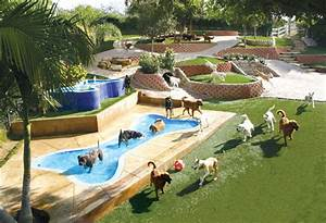 canyon view ranch dog boarding and training facility my With best dog boarding facilities