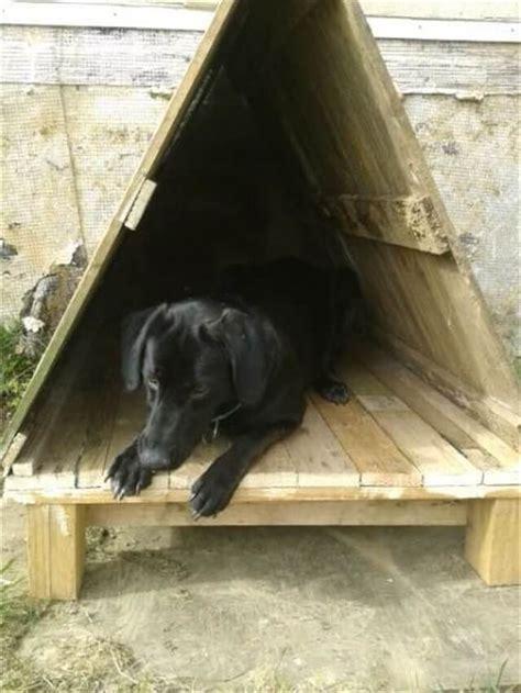 bring  luck  home  pallet dog house pallet furniture diy