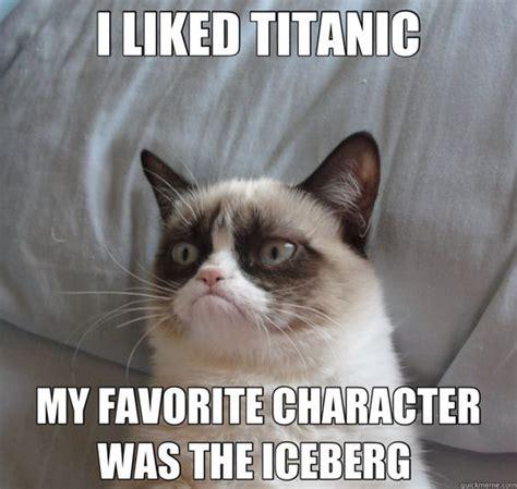 Star Wars Cat Meme - cat grumpy cat quotes titanic ok pictures pranks pinterest grumpy cat humor grumpy