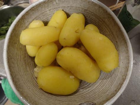recette de la salade de pomme de terre 171 poteto salada