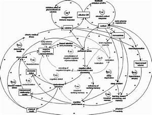 Causal Loop Diagram Of Cognitive  Social  Environmental