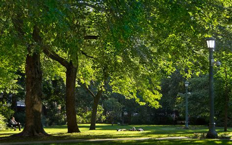 The top 5 hidden parks and gardens in Toronto
