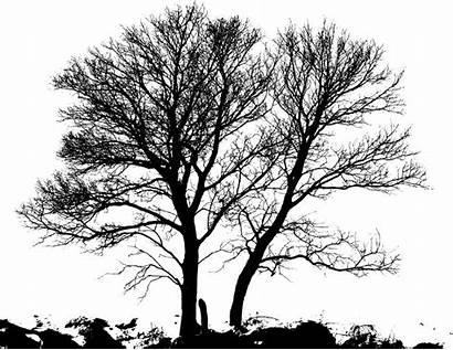 Tree Winter Silhouette Tattoo Inspiration
