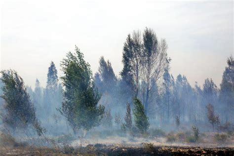 Stiprā vēja dēļ neizdodas iegrožot ugunsgrēku Ozolu kūdras ...