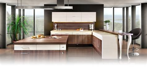 The Kitchen Cabinets and Remodelling Source and Design