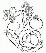Vegetables Coloring Vegetable Pages Letter Fruits Printable Worksheet Preschool Learn Worksheets Sheets Kindergarten Alphabet Farm Basket Popular Worksheeto Ikidsdrawing sketch template