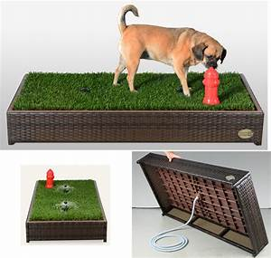 A grass filled quotlitter boxquot for your dog the gadgeteer for Dog litter box grass