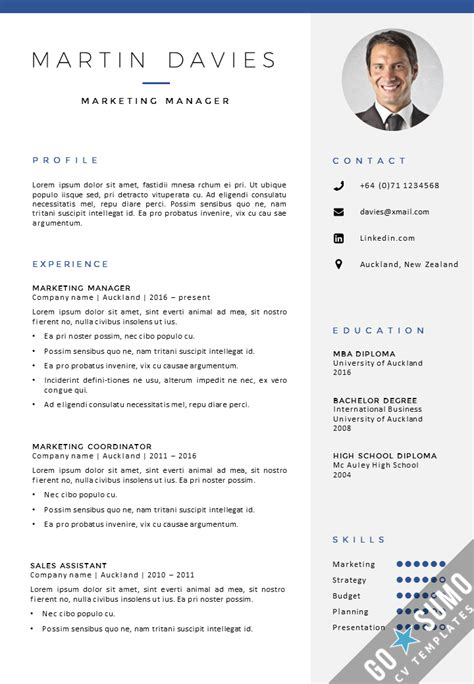 curriculum vitae layout template cv template auckland gosumo cv template