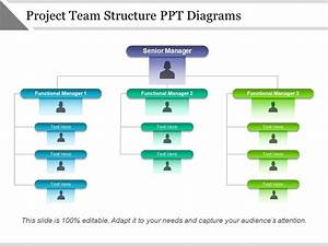 Project Team Structure Ppt Diagrams
