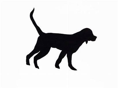 Silhouette Clipart Silhouettes Dog Retriever Dogs Labrador