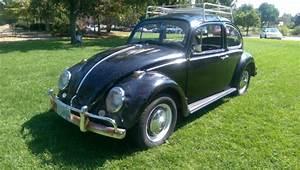 1965 Volkswagen Bug For Sale - Volkswagen Beetle