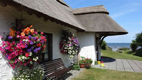 star cottages  star  catering bettystown