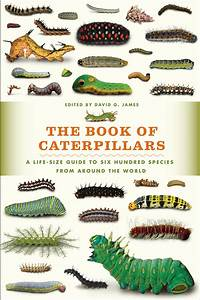 The Book Of Caterpillars  A Life