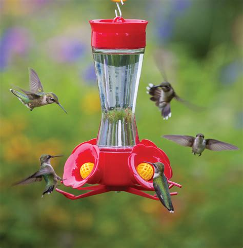 hummingbird feeder duncraft com best selling four flower frolic hummingbird feeder
