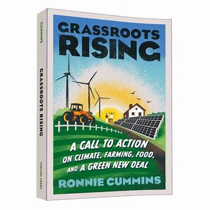 Climate Action Rising Books Grassroots Call Greennewdeal