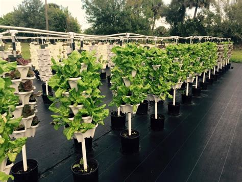 Diy Vertical Hydroponic Garden by Diy Vertical Hydroponic 4 Tower Kit
