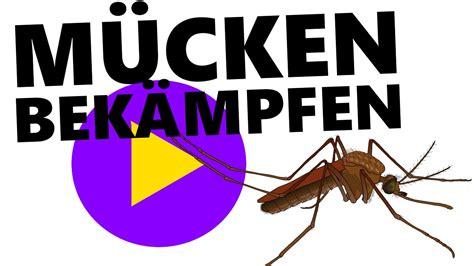 Tipps Gegen Mückenstiche!