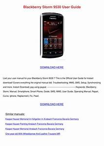 Blackberry Storm 9530 User Guide By Charlenewinchester