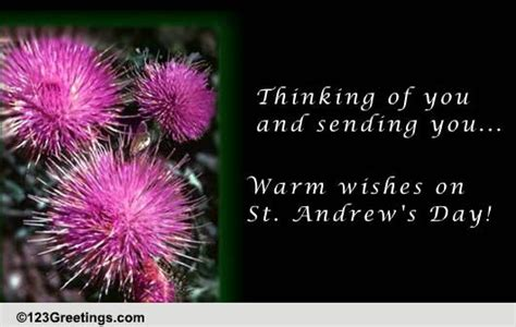 st andrews day warm wishes  st andrews day ecards