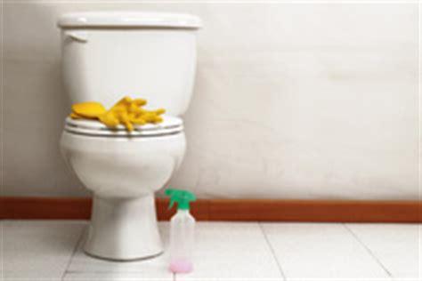 nettoyer wc infos et conseils pour le nettoyage des wc