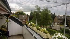 dachloggia in tonisvorst bei krefeld katzensicher vernetzt With katzennetz balkon mit liegenauflage sun garden